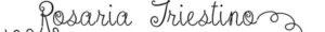 logo rosaria triestino